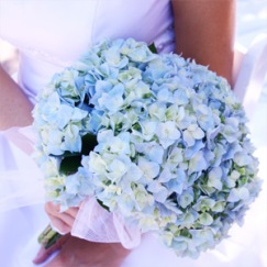 http-::www.bellabeachweddings.com:beach-wedding-bouquets